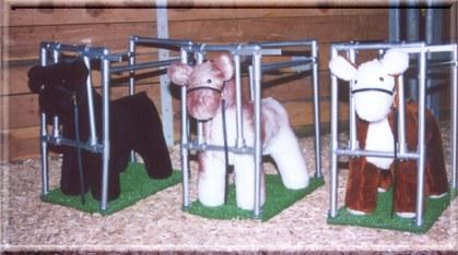 Welcome To Stuffed Show Steers